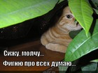 https://lolkot.ru/2011/11/08/fignyu-dumayu/