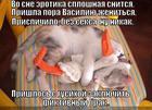 https://lolkot.ru/2013/04/25/fiktivnyy-brak/
