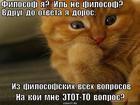 https://lolkot.ru/2014/06/11/filosof-3/