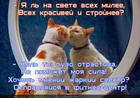 https://lolkot.ru/2014/03/09/fitnes-3/