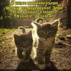 https://lolkot.ru/2013/05/22/fobos-i-deymos/
