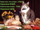 https://lolkot.ru/2017/01/22/geografiya-odnogo-tela/