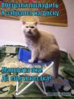 https://lolkot.ru/2014/11/29/gladilnaya-toska/