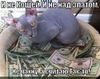 https://lolkot.ru/2013/12/03/gobsek-ya/