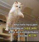 https://lolkot.ru/2014/11/29/golodnyy-skvoznyak/