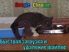 https://lolkot.ru/2012/03/28/google-chrome/