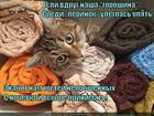 https://lolkot.ru/2014/03/02/gostey-ne-zhdali/