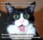 https://lolkot.ru/2013/04/14/govorit-ne-stanu-pro-smetanu/