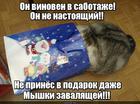 https://lolkot.ru/2015/12/29/govoryat-to-chto-tsar-ne-nastoyaschiy-s/