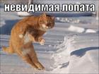 https://lolkot.ru/2008/06/02/nevidimaya-lopata/