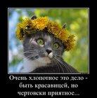 https://lolkot.ru/2012/08/13/hlopotnoye-delo/