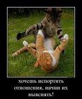 https://lolkot.ru/2012/06/29/hochesh-isportit-otnosheniya/