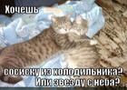 https://lolkot.ru/2012/11/27/hochesh-2/