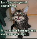 https://lolkot.ru/2014/11/16/hochu-byt-gryaznym/