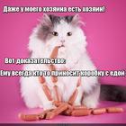 https://lolkot.ru/2016/08/25/hozyain-hozyaina/
