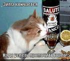 https://lolkot.ru/2013/02/24/hryas-vesnoy-zakon-suhoy/