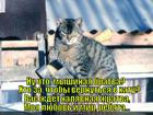 https://lolkot.ru/2014/04/09/hto-za/