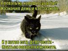 https://lolkot.ru/2014/12/17/i-moroz-ne-pugayet/