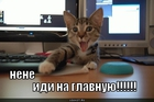 https://lolkot.ru/2010/09/14/idi-na-glavnuyu/