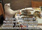 https://lolkot.ru/2013/09/14/ihabogadushumat/