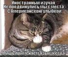 https://lolkot.ru/2012/09/05/inostrannyy/
