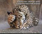 https://lolkot.ru/2014/07/02/ipoteka-dlya-bolshoy-semi/