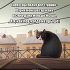 https://lolkot.ru/2020/06/28/iskazhennaya-proyektsiya/
