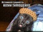 https://lolkot.ru/2010/06/10/istinnaya-suschnost/