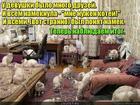 https://lolkot.ru/2019/03/17/itogovaya-ponyatlivost/