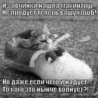 https://lolkot.ru/2014/06/21/iz-ovchinki-nasha-kosh/