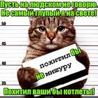 https://lolkot.ru/2017/05/15/izbiratelnyy-2/