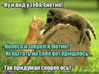 https://lolkot.ru/2018/01/18/izobretateli/