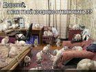 https://lolkot.ru/2011/10/19/kak-kseroks-otklyuchit/