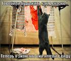 https://lolkot.ru/2013/06/19/kak-v-skazke-2/