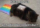 https://lolkot.ru/2012/06/01/kakaya-krysha/