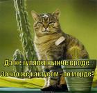 https://lolkot.ru/2013/03/06/kaktusom-po-morde/