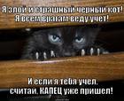 https://lolkot.ru/2012/11/29/kapets-uzhe-prishel/