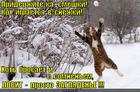 https://lolkot.ru/2013/11/22/kirzhakov-ne/
