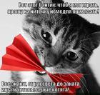 https://lolkot.ru/2014/07/01/kisulya-igrulya/