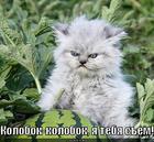 https://lolkot.ru/2012/08/09/kolobok-na-novyy-lad/