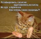 https://lolkot.ru/2015/04/26/kolyuchki/