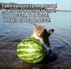 https://lolkot.ru/2013/11/06/komu-govoryat-ne-revi/