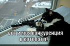 https://lolkot.ru/2011/03/22/konkurentsiya/