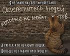 https://lolkot.ru/2018/08/11/koshache-predosterezheniye/