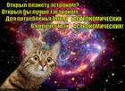 https://lolkot.ru/2015/03/13/kosmicheskiy-obzhora/