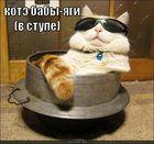 https://lolkot.ru/2011/05/04/kote-baby-yagi/
