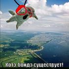 https://lolkot.ru/2010/07/12/kote-bonde/