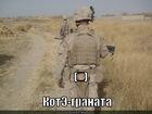 https://lolkot.ru/2011/12/05/kote-granata/