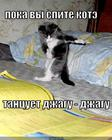 https://lolkot.ru/2010/03/03/kote-tantsuyet/