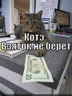 https://lolkot.ru/2012/03/21/kote-vzyatok-ne-beret/